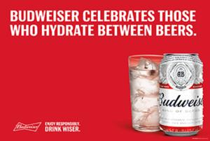 Drink Wiser with Budweiser